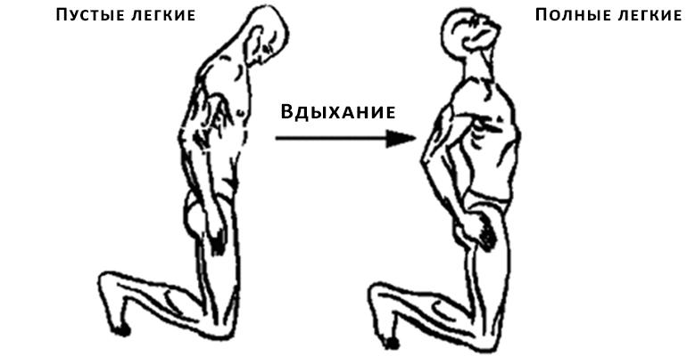 Третье упражнение Полумесяц
