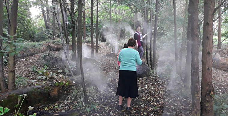 Tuman i vodnaya pyl
