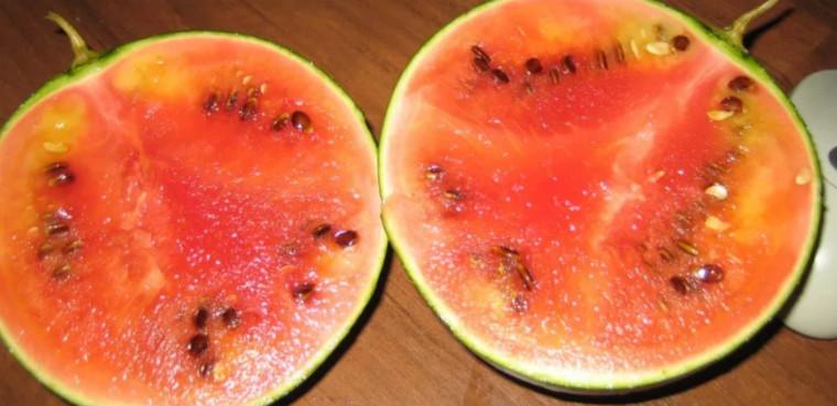 Nitraty v arbuze