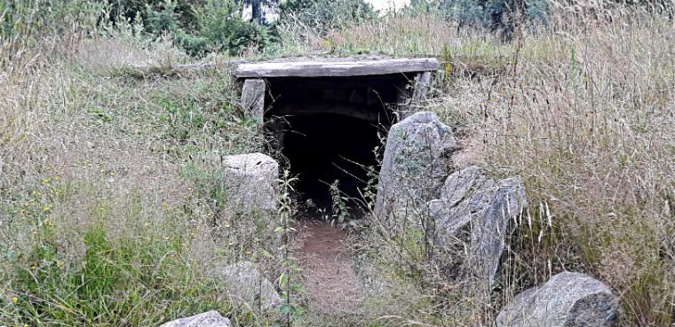 Vhod v zhilishhe