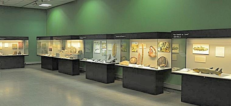 Фойе геолого-палеонтологического музея