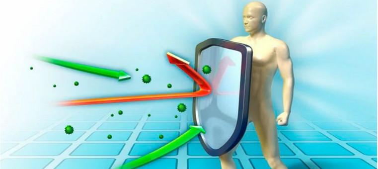 Иммунитет щит болезням