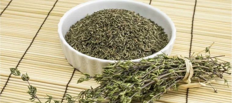 Трава тимьян для отвара от судорог