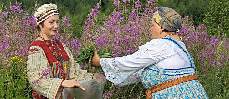 Иван-чай для женщин