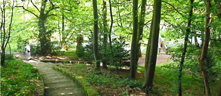 Парк замка Агатенбург