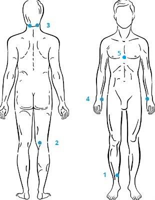 Точки на теле для повышения иммунитета