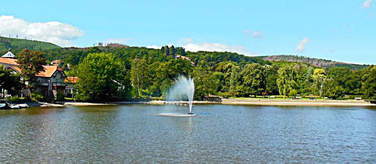 Форелевый пруд с фонтаном