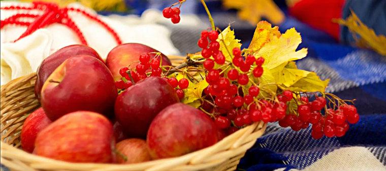 Осенний урожай яблок и рябины