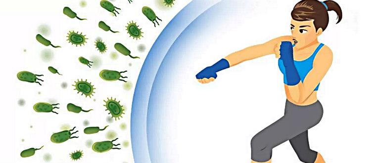 Битва за сильный иммунитет