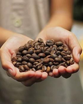 Кофеин в зернах