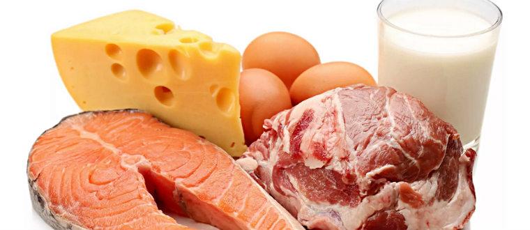 Животные протеины