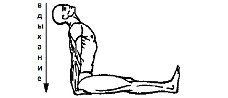 Упражнение 4 Мостик Позиция 2
