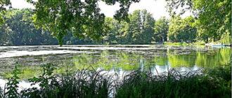 Большое озеро Аппельбек