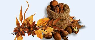 Орехи на Ореховый Спас