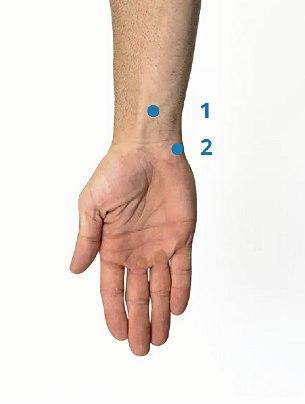 Пункты 1-2 на руке