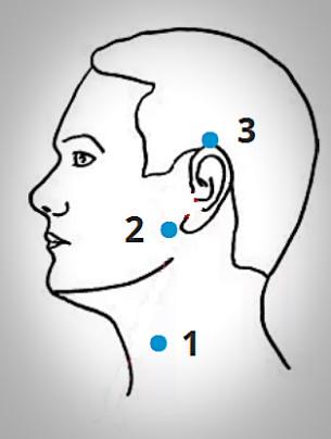 Пункты на голове и шее