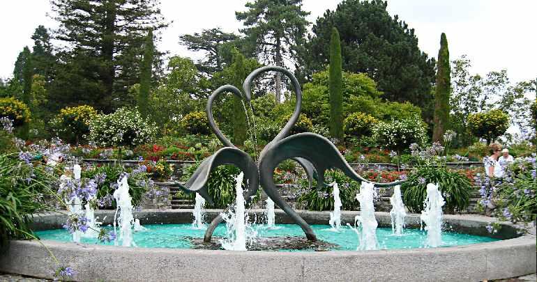Романтичный фонтан с лебедями