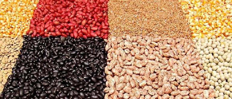 Железосодержащие растительные продукты
