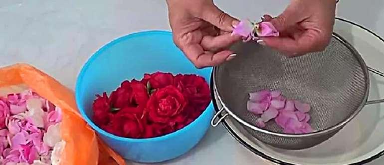 Лепестки роз для приготовления розовой воды