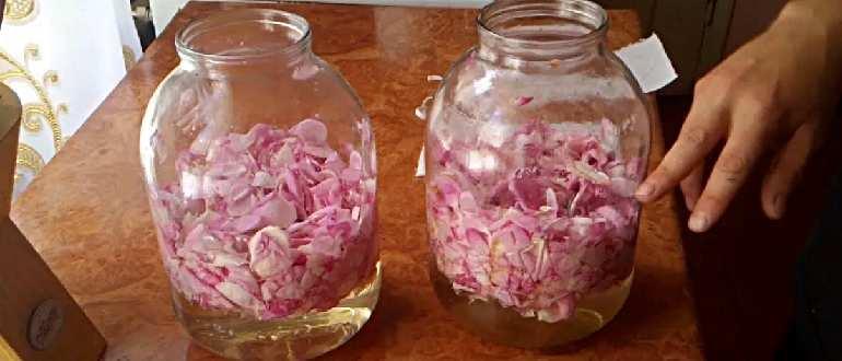 Банки с лепестками роз в воде