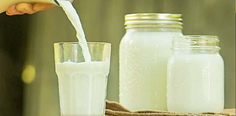 кефир и йогурт в стеклянной посуде
